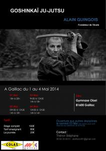 Affiche du stage de Goshinkaï Ju-Jutsu animé par Alain GUINGOIS à Gaillac du 1er au 4 mai 2014.